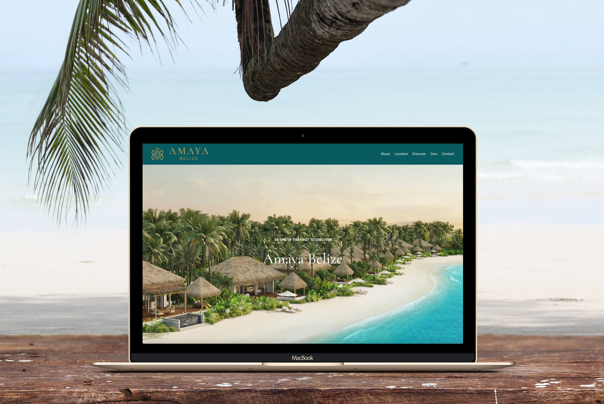 Amaya Website